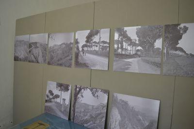 Pietro Zangheri, immagini fotografiche (1930 circa)